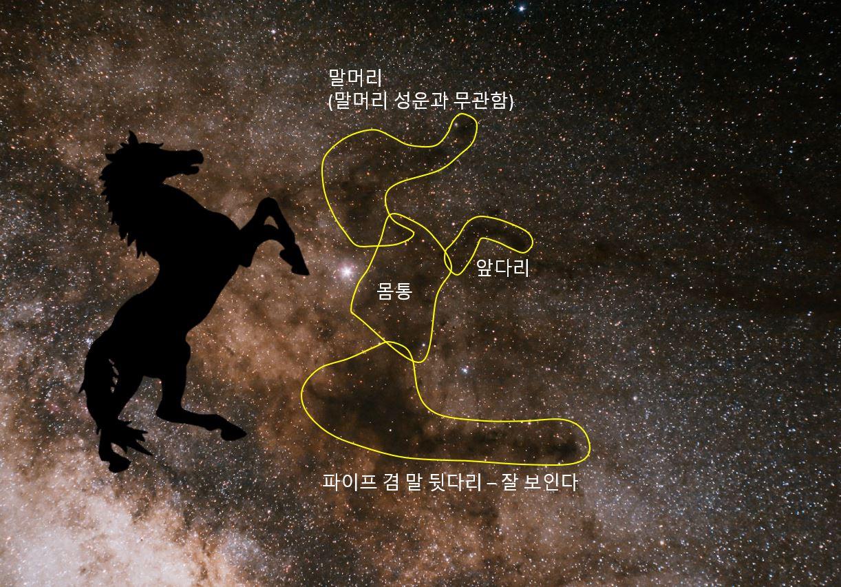 Dark horse explanation.JPG