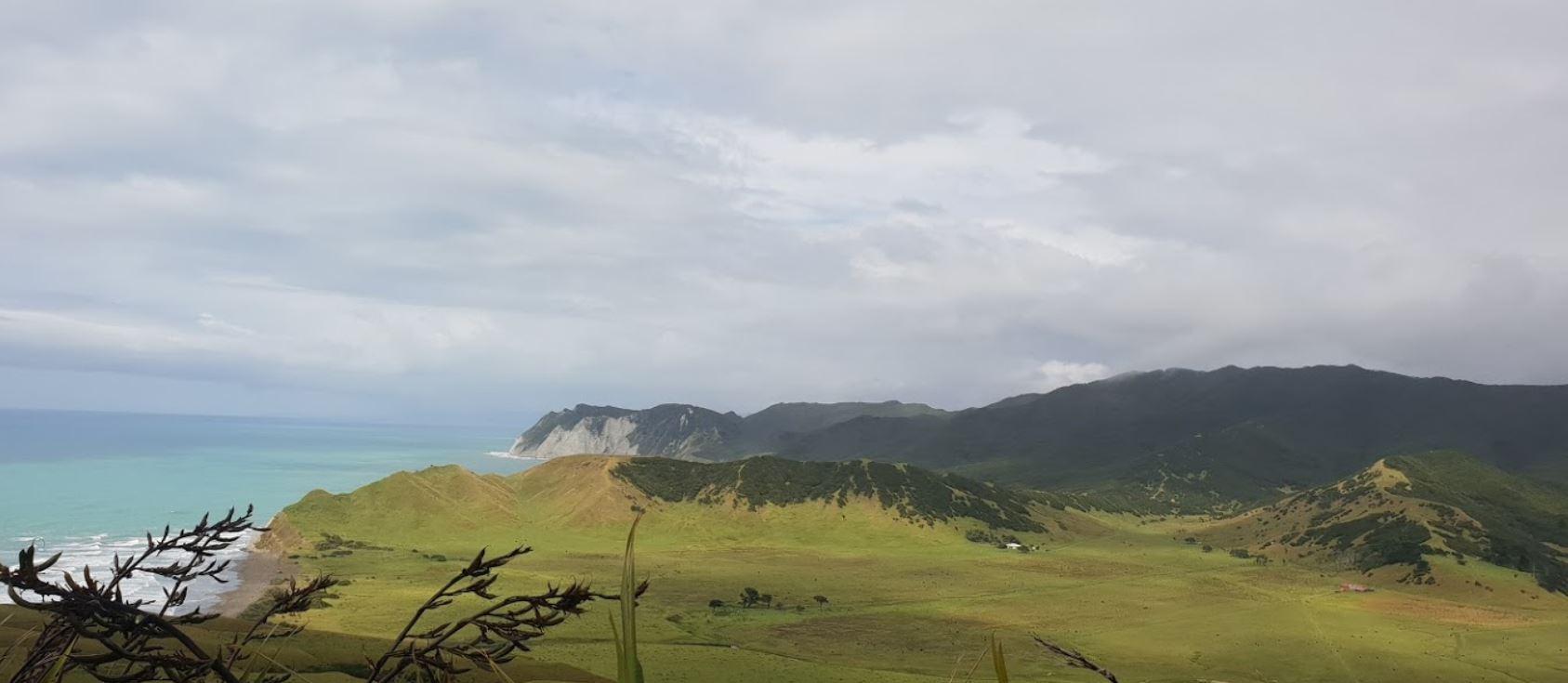East Cape 3.jpg