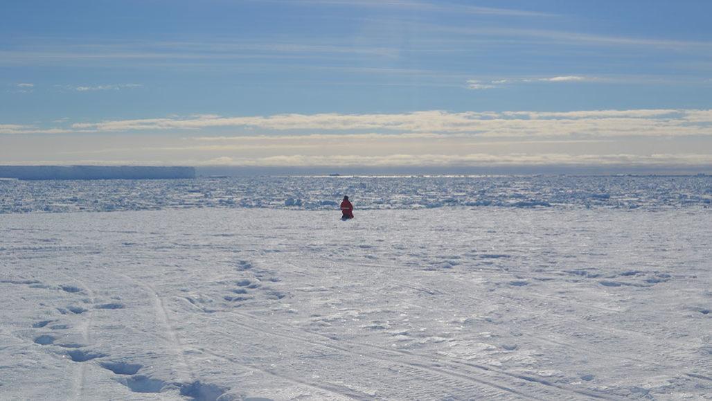 Antarctica land 2.jpg