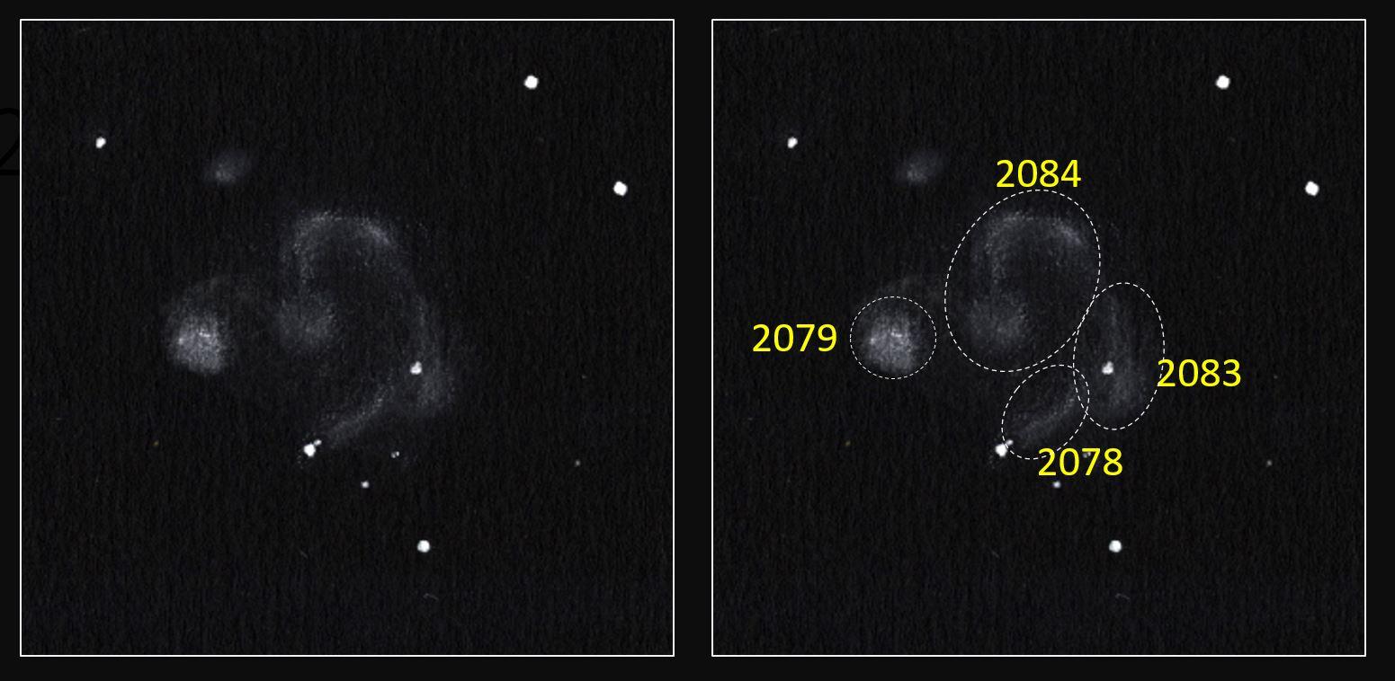 NGC2079&Desc.JPG
