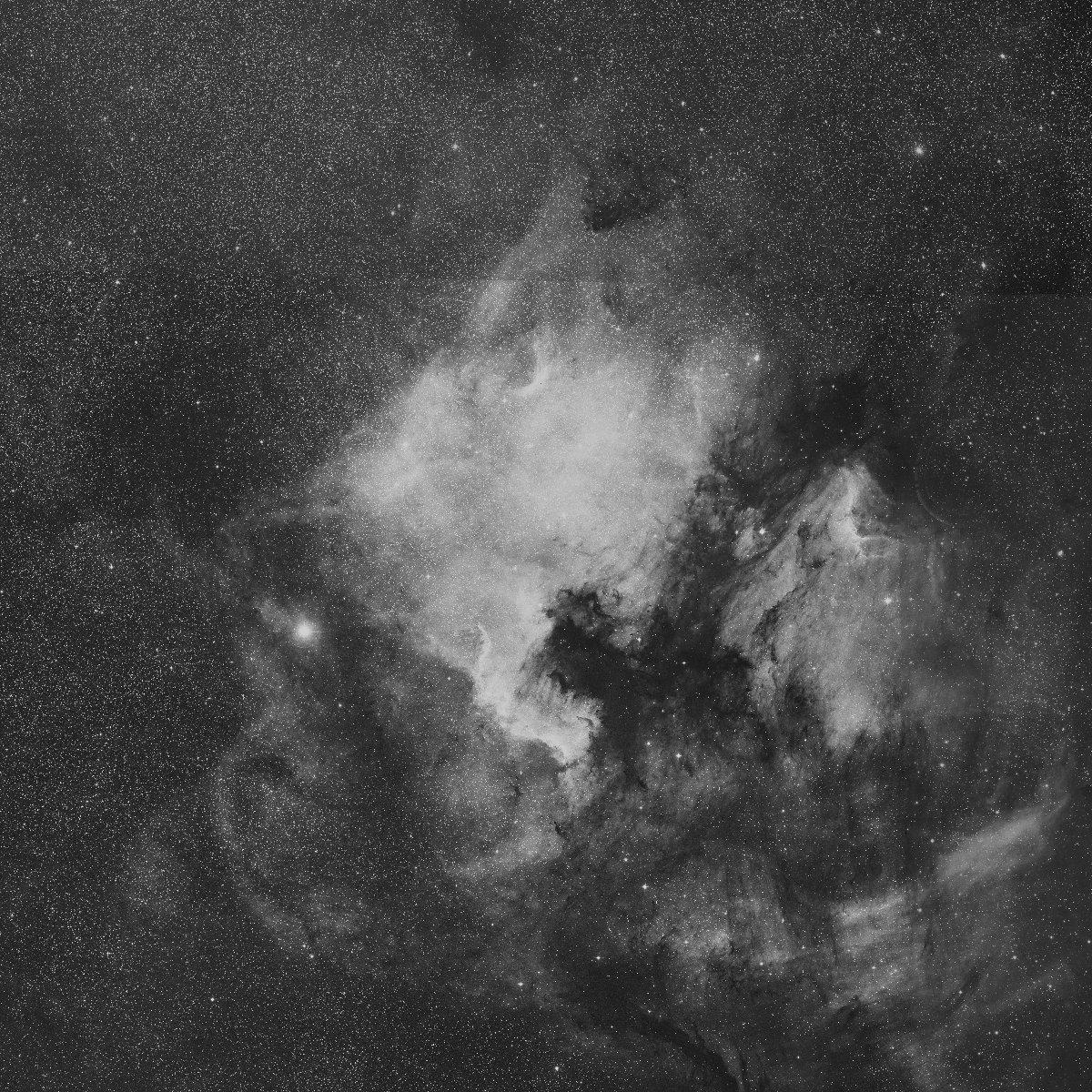 NGC7000_skyview.jpg